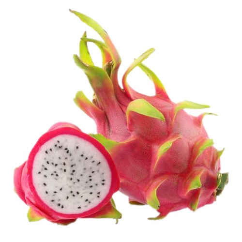 Dragon Fruit DIY