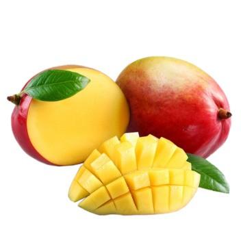 Mango DIY Flavor Concentrate