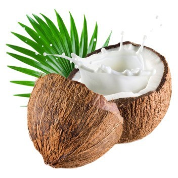 Coconut DIY Flavor Concentrate