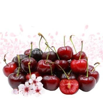 Cherry Slush DIY Flavor Concentrate